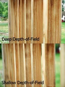 depth-of-field-railing
